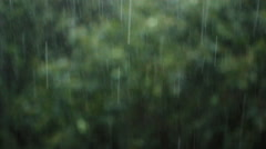 Texture strong tropical rain on a background of foliage Stock Footage
