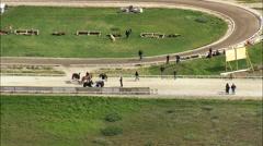 Hella Horse Fair Stock Footage