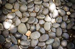Pebble stone texture,decoration floor Kuvituskuvat