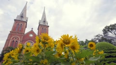 View of Saigon Notre-Dame Basilica. Focus at sunflowers Stock Footage