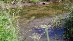 Feet cross the Creek Stock Footage