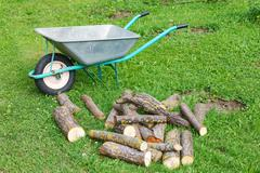 hand truck with firewood on the green grass - stock photo