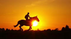 Cowboy riding on hourse galloping on sunset in backlight, slow motion. Stock Footage