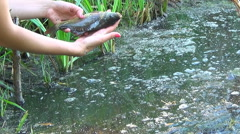 A Girl holds a fish in the river water and lets it go Stock Footage