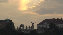 Eagle statue in the morning Stock Footage