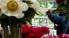 Exhibition of flowers, peonies of different varieties, Botanical Garden, Moscow Stock Footage