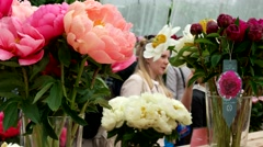 Exhibition of flowers, multi-colored peonies, Botanical Garden of MSU, Moscow Stock Footage