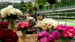 exhibition of flowers, peonies, irises, Botanical Garden of MSU, Moscow - stock footage