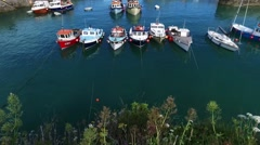 Fishing boats in harbour through wild flowers Stock Footage