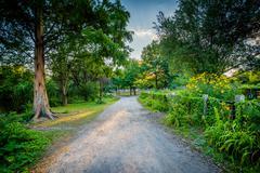 Walkway and gardens at Back Bay Fens, in Boston, Massachusetts. Kuvituskuvat