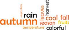 Word cloud - autumn Stock Illustration