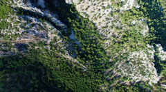 Flying over Green Trees and Mountain With Drone Cam. 4K Clip Stock Footage