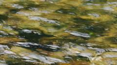 The rapid smooth flow of the mountain river Stock Footage