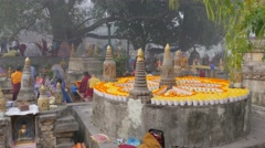 Petals in watercups flower decoration,BodhGaya,Mahabodhi Temple Complex,India Stock Footage