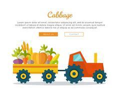 Cabbage Farm Web Vector Banner in Flat Design Stock Illustration