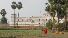 Women working on field with historical building,BodhGaya,India Stock Footage