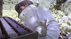 Hispanic apiarist collecting honey Stock Footage