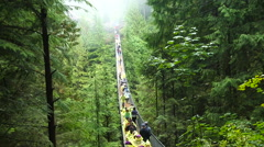 The Capilano Suspension Bridge, North Vancouver, Canada. Stock Footage