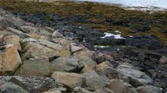Mount Kirkjufell, the beautiful landmark of west Iceland Stock Footage