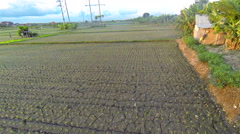 Sunset on the rice fields, Sanur, aerial shot Stock Footage