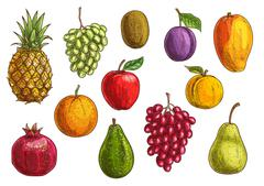 Tropical and exotic fruits isolated icons Stock Illustration