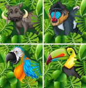 Wild animals in the safari Stock Illustration