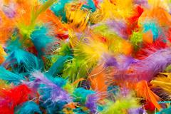 Soft fluffy brightly colored bird feathers texture Stock Photos