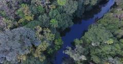 Beautiful wild rainforest in Queensland Australia birds eye view  Stock Footage
