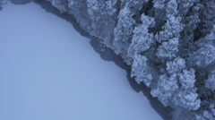 Aerial Shot of Large Pine Forest Covered with Snow at Winter. Stock Footage