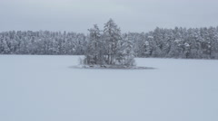 Aerial Shot of Small island of Trees in the Middle of Frozen Lake Stock Footage