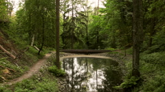 Girl Runs Along the Forest Trail by the Lake Stock Footage