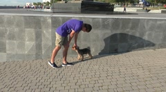 Young Boy Playing With Little Fluffy Dog in Sunny Street - stock footage