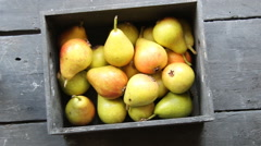 Pears at a famers market Stock Footage