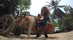 Volunteer Girl in Animal Shelter Taking Care of Disabled Dog. 4K. - stock footage