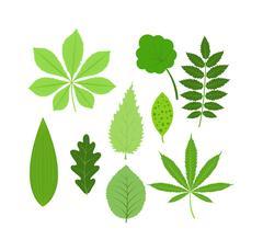 Leave icon vector illustration Stock Illustration