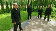 Training in the park. Group of people practicing the elements of qigong. 4K Stock Footage