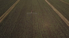 Tractor is spraying fertilizers potato field.Aerial video Stock Footage