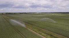 Aerial view:Irrigating machine in a potato field Stock Footage