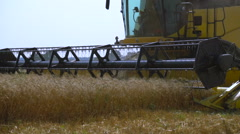 Combine-harvester gathers the wheat Stock Footage