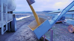 Grain from feed truck pours into hopper to storage elevator Stock Footage