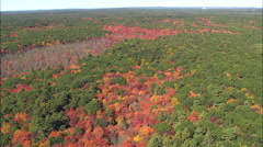 Fall Colours Near Befford Stock Footage