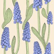 Seamless pattern with grape hyacinth Stock Illustration