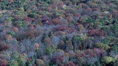 Landscape Of Trees Stock Footage