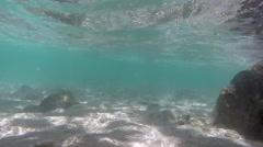 Under water in the sea and waving Stock Footage