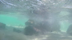 Walking under the water on the beach Stock Footage