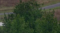 Saratoga National Battlefield Stock Footage