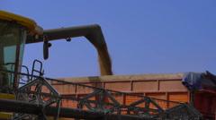 Combine-harvester unload grain - stock footage