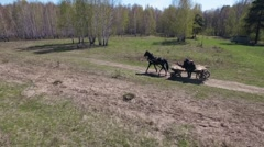 Men go to the horse carts in woods Stock Footage