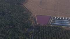 Pink Ponds From Intensive Farming Stock Footage