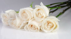 White Roses Fall Slow Motion Stock Footage